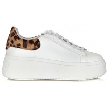 Chaussures Femme Baskets basses Ash F20-MOBY01 Blanc