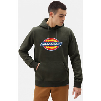 Vêtements Homme Sweats Dickies San antonio hoody Vert