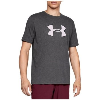 Vêtements Homme T-shirts manches courtes Under Armour Big Logo SS Tee Gris