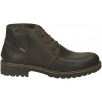 Chaussures Homme Boots IgI&CO UFEGT 61228 caffe_SS_