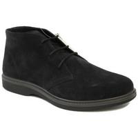 Chaussures Homme Boots Grisport BOTTES  - 42011 ARCTIC bleu