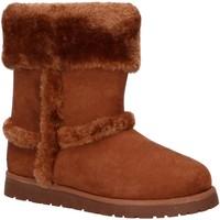 Chaussures Fille Bottes de neige Levi's VWAV0001S TIDE Marr?n