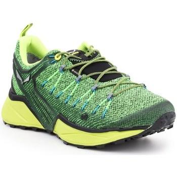 Chaussures Homme Baskets basses Salewa MS Dropline Gtx Vert, Vert clair