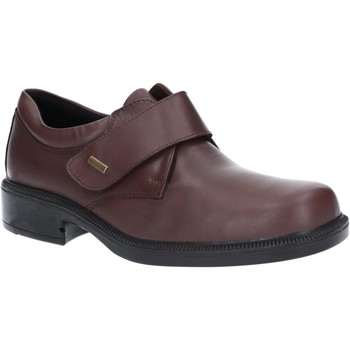 Chaussures Homme Mocassins Cotswold Cleeve Marron