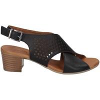Chaussures Femme Sandales et Nu-pieds Melluso K55090X NOIR