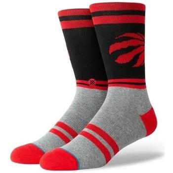 Accessoires Chaussettes de sport Stance Chaussettes NBA Toronto Raptor Multicolore