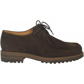 Chaussures Homme Derbies Antica Cuoieria CORTINA nutella