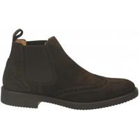 Chaussures Homme Boots Antica Cuoieria VELOUR testa-di-moro