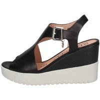 Chaussures Femme Marques à la une Stonefly 213914 NOIR
