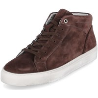 Chaussures Homme Baskets montantes Sioux 38192 Marron