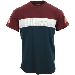 Vêtements Homme T-shirts manches courtes Ellesse Pogbino T-Shirt bleu