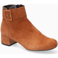 Chaussures Femme Bottines Mephisto Bottines cuir BALINA Marron