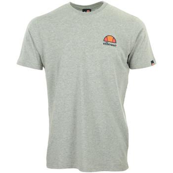 Vêtements Homme T-shirts manches courtes Ellesse Canaletto T-Shirt gris