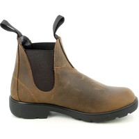 Chaussures Femme Low boots Tratti Di Donna FR2099.02_35 Marron