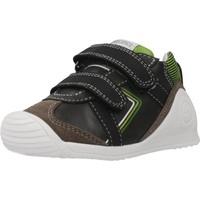 Chaussures Garçon Bottes Biomecanics 201126 Marron