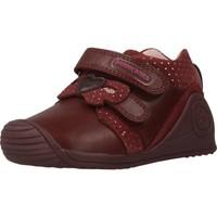 Chaussures Fille Baskets basses Biomecanics 201109 Rouge