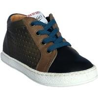 Chaussures Garçon Baskets montantes Pom d'Api Mousse Zip Lace kaki