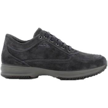 Chaussures Homme Randonnée IgI&CO 6117533 sneakers Blue