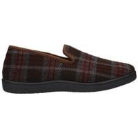 Chaussures Homme Chaussons Roal 12010 Hombre Marron marron