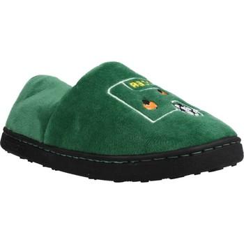 Chaussures Garçon Chaussons Gioseppo LEIMEN Vert