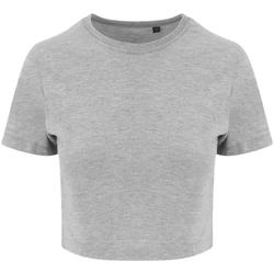 Vêtements Femme T-shirts manches courtes Awdis JT006 Gris chiné