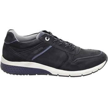 Chaussures Homme Baskets basses Salamander Tonjo Noir Noir