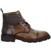 Chaussures Homme Boots Salamander Modena Tan Marron Marron