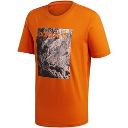 Vêtements Homme T-shirts manches courtes adidas Originals ADV TEE ARANCIONE Orange