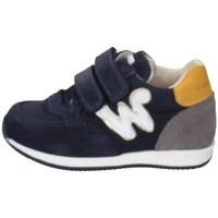 Chaussures Garçon Baskets basses Balducci CSP4350 BLEU