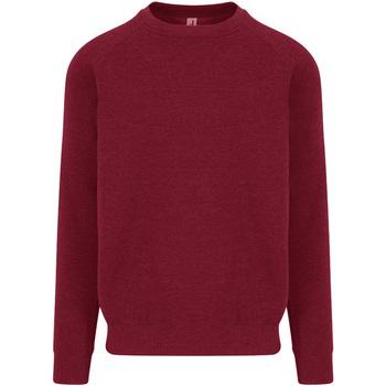 Vêtements Homme Sweats Awdis JH130 Rouge