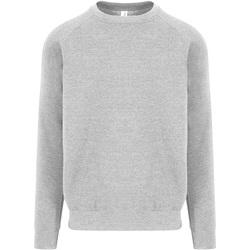 Vêtements Homme Sweats Awdis JH130 Gris clair