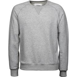 Vêtements Homme Sweats Tee Jays T5400 Gris clair