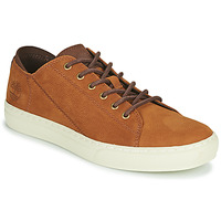Chaussures Homme Baskets basses Timberland ADV 2.0 CUPSOLE MODERN OX Cognac