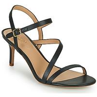 Chaussures Femme Sandales et Nu-pieds Lauren Ralph Lauren LANDYN Noir