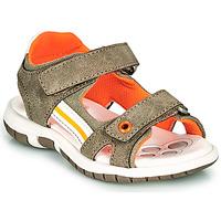 Chaussures Garçon Sandales et Nu-pieds Chicco FLAUTO Kaki