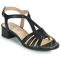 Chaussures Femme Sandales et Nu-pieds Caprice 28201-022 Noir