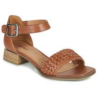 Chaussures Femme Sandales et Nu-pieds Caprice 28208-303 Cognac