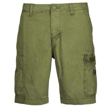 Vêtements Homme Shorts / Bermudas Napapijri NOSTRAN Vert