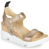 Chaussures Femme Sandales et Nu-pieds Fly London SENA Doré