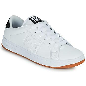 Chaussures Homme Chaussures de Skate DC Shoes STRIKER Blanc / Noir