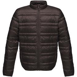 Vêtements Homme Doudounes Regatta RG119 Noir