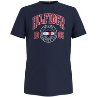 Vêtements Garçon T-shirts manches courtes Tommy Hilfiger CRISA Marine