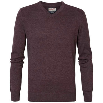 Vêtements Homme Pulls Petrol Industries KWV200 3118 SYRUP Bordeaux