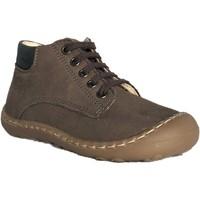 Chaussures Garçon Boots Bopy Jazz Marron