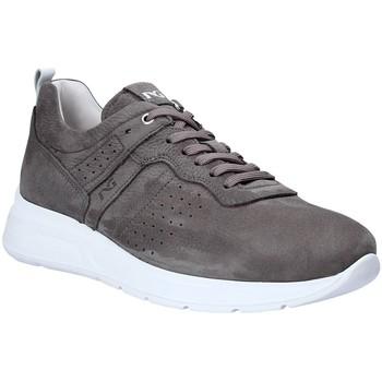 Chaussures Homme Baskets basses Nero Giardini P900920U Gris