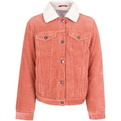 Vêtements Enfant Vestes Losan 024-2001AL Rose