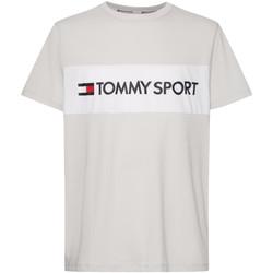 Vêtements Homme T-shirts & Polos Tommy Hilfiger S20S200375 Gris