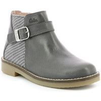 Chaussures Fille Bottines Aster Wizy GRIS