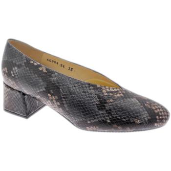 Chaussures Femme Escarpins Calzaturificio Loren LO60904pit grigio