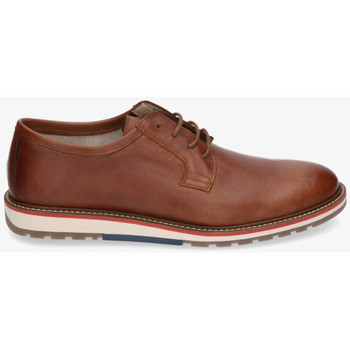 Chaussures Homme Derbies & Richelieu Kennebec 8518 LISO Marron